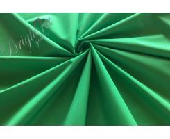 Таслан «Зелёное яблоко»